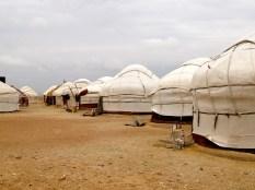 ::yurts!::