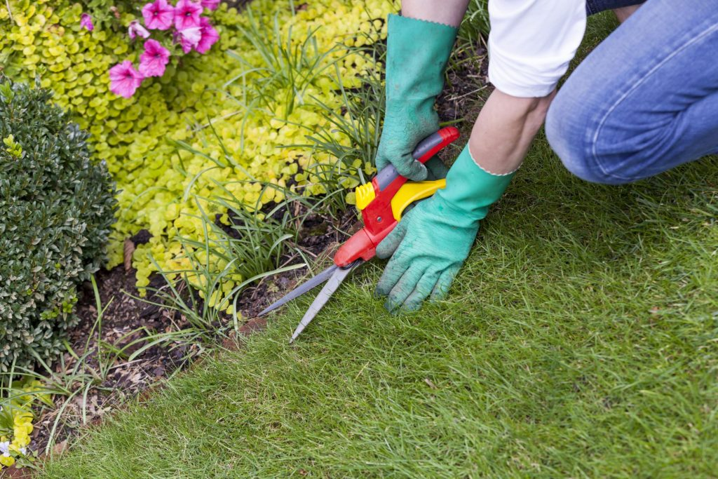 Butler County Landscaping - Services