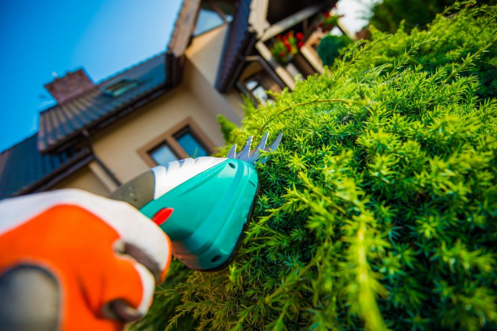 Butler County Landscaping - Tree and Shrub Care 1