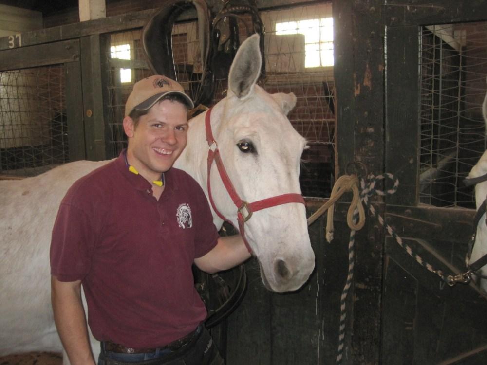 medium resolution of mule foot care