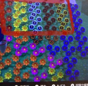 【あつ森】紫パンジーが曲者過ぎる!皆は咲いてる?【あつまれ どうぶつの森】