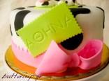 cow cake-6wtr