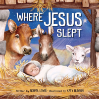 Where Jesus Slept {Book Review}