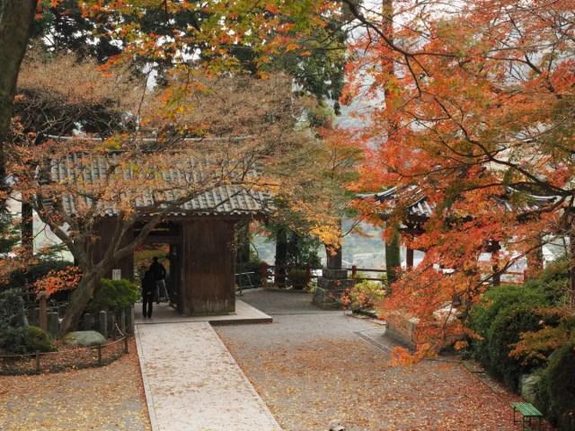 大興善寺 3
