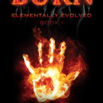 Review: Burn by TJ Klune