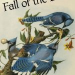 Review: Fall of the Birds by Bradford Morrow