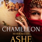 When Love Takes Over by Ashe Barker, Chameleon Excerpt & Giveaway