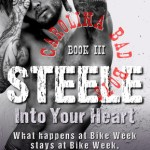 Indie Flutters: Steele, Into Your Heart by Rie Warren & Excerpt