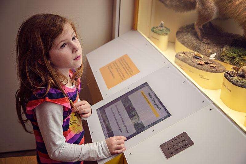 ferien in bayernmuseum mensch und natur