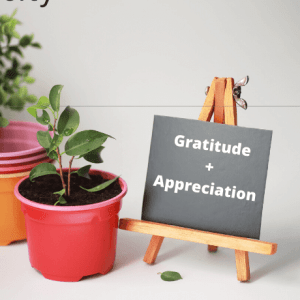 Plant in a red pot-Growing in Generosity