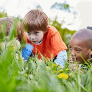 3 Children looking at grass-Curiosity in Kids