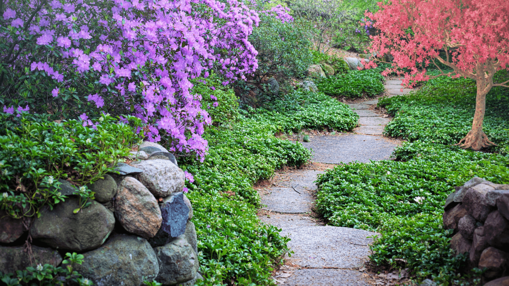 Garden path-purpose in life