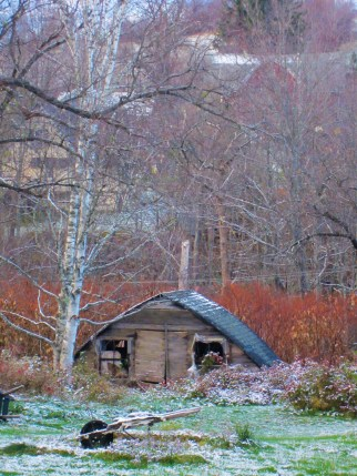 Half sunk shed