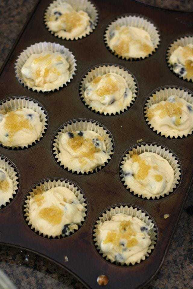 Lemon Blueberry Muffins.IMG_0027
