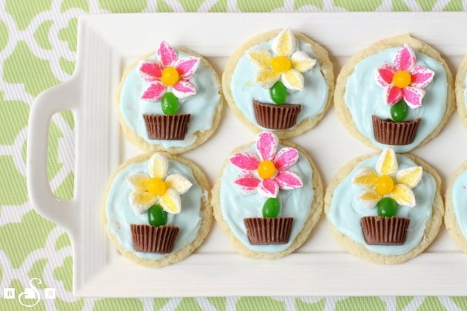 Flower Pot Cookies are easy to make and perfect for Spring baking! Everyone loves these cute treats with candy flowers in a chocolate pot on top!