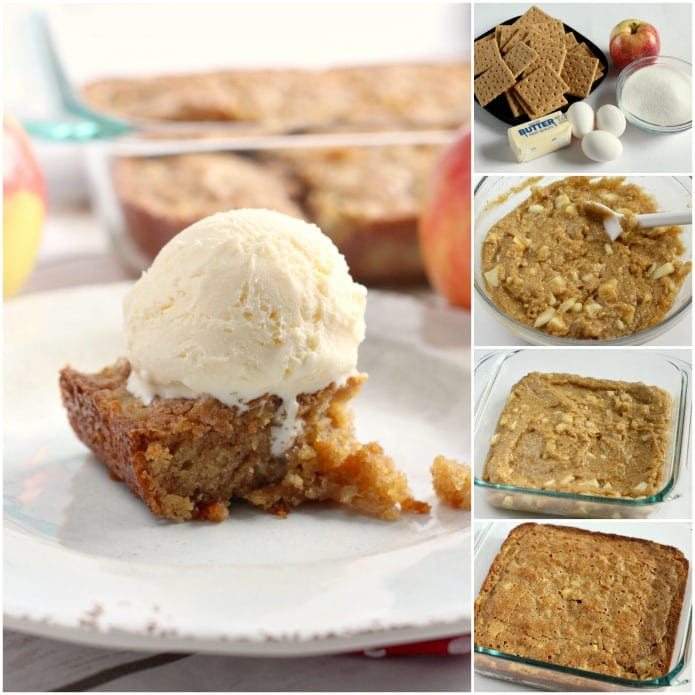 Cinnamon Apple Snack Cake is made with graham cracker crumbs, chopped apples and just three other basic ingredients! This cake is so moist and delicious - no one will believe how easy it is to make!