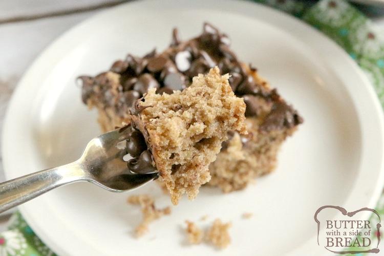 Bite of oatmeal cake