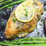 sheet pan lemon herb chicken on a baking sheet with asparagus