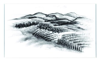 Mauritson Wines Label