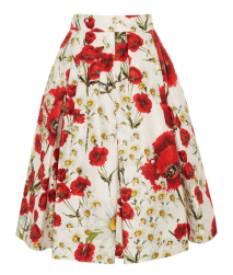 Net-a-Porter - Dolce & Gabbana floral print skirt