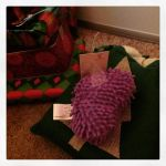 Photo of the Day: First day of the #12daysswap! Percy is already eyeing this one… Thank you, Beth! :D