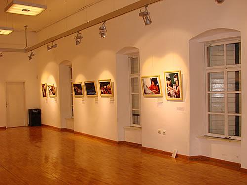 Izlozba u Modernoj galeriji povodom proslave kineske Nove godine - 15