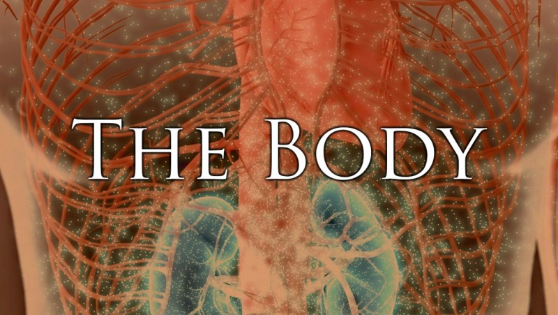 The Body Pandemics