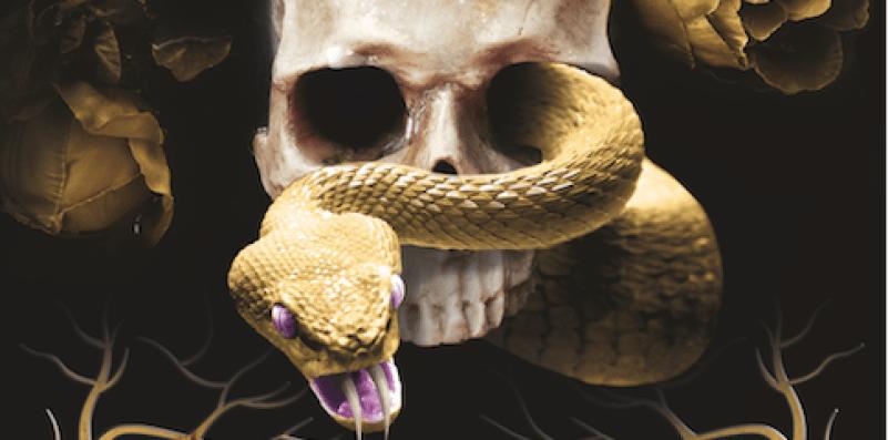 A golden snake curls through a human skull.