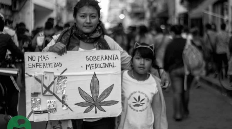 """""""Nuestro dolor no espera"""": Mamá Cultiva pide ley de Cannabis a Fernández-Fernández"""