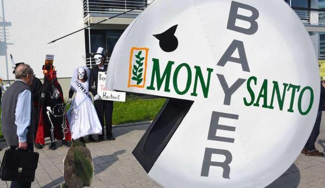 EEUU: Herbicida de Monsanto hecho con glifosato le trajo cáncer a una persona