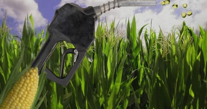 Biocombustibles: el salteño Zottos acompaña propuesta cordobesa por nueva regulación