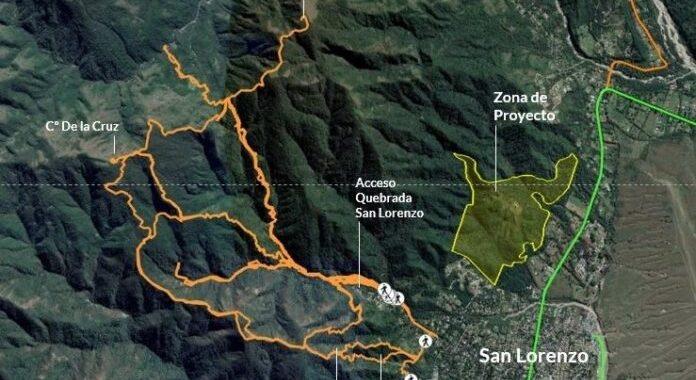 """""""Sáenz es cómplice del crimen ambiental en la Selva de Yungas"""", denunció GreenPeace"""