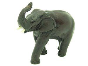 Elephant With Raised Trunk1