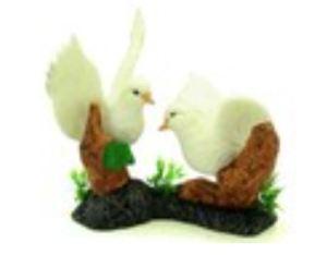 Pair of Lover Pigeons