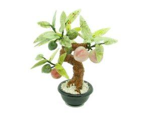 Jade Peach Tree1