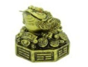 Pakua Good Fortune Money Frog