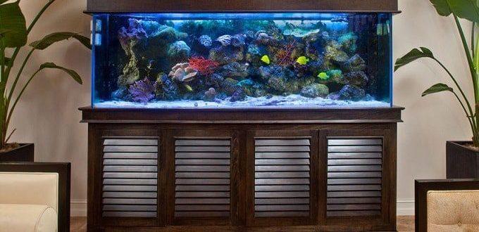 fengshui-aquarium