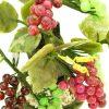 Fruitful Grapes Jade Plant5