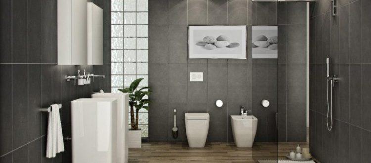 feng-shui-toilet