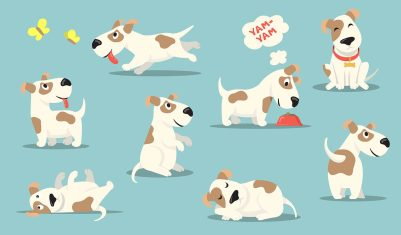 Happy small dog set. Cute funny puppy practicing different activities, hunting, playing, eating, sleeping. Vector illustrations collection for pet care, animal adoption, canine, breed concept