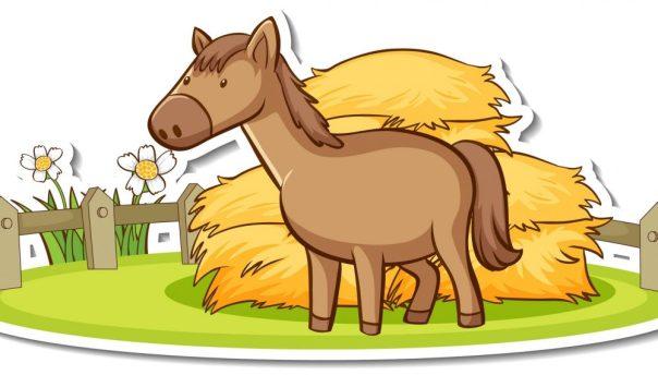 Horse Horoscope Predictions 2022