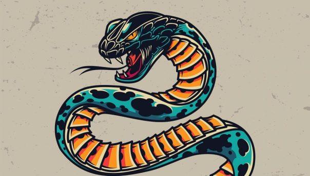 Snake Horoscope Predictions 2022