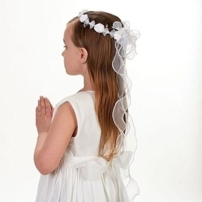 Communion Veil
