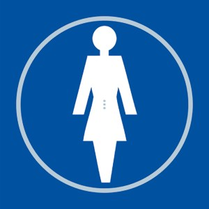 Ladies Toilet Blue Braille Sign