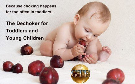The Toddler Dechoker - Grapes