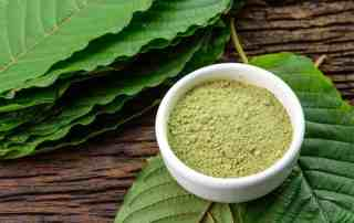 Will Kratom Show Up in a Drug Test?
