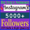 Buy 5000 Instagram Followers