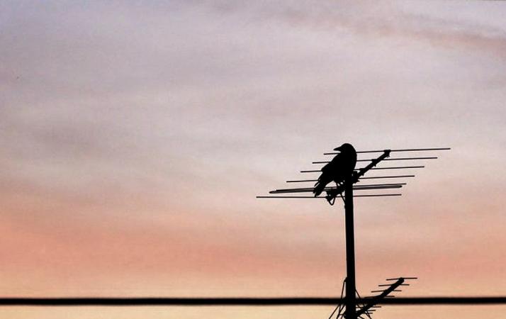 Long Range Outdoor HDTV Antennas