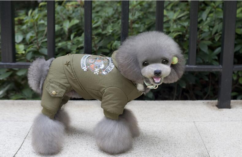 BIO: Pet clothes