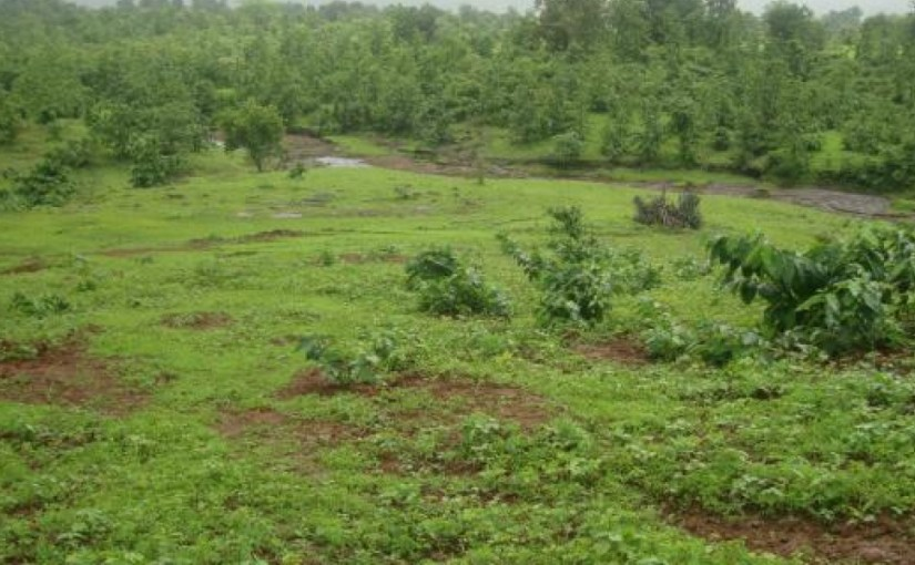 How To Make Money Off Your Vacant Land In Lagos State